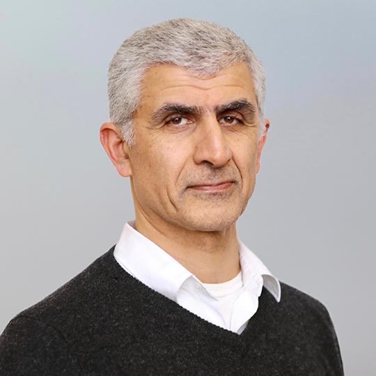 Hossein Sadeghpour
